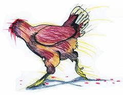 GALINHA SEM CABEA (suzanasacchipadovano) Tags: co de tristeza galinha pessoas beijo mulher banana corao bode floresta mos tesoura vitrine artista sorte abacaxi sapato asas cadela chuchu panela astrologia penca depresso velhodiabopincispssarosculosmodelonuvemnariz palhaomandioca
