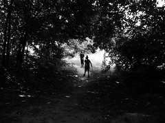 Small wilderness for small ones (un2112) Tags: children childhood forest blackandwhite bw hungary countryside lighsandshadows son excursion adventure trees summer july panasonicg7 people silhouette