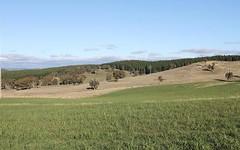 2500 Arkstone Road, Burraga NSW