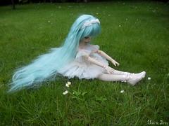 Kashi (Ushi de Bray) Tags: anime doll dream mini dollfie volks mdd