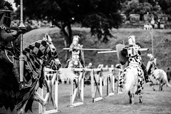Player 4 has entered the game.. (Adrian Milne) Tags: castle cardiff joust tilt cardiffcastle mediaeval
