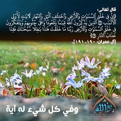 29 (ar.islamkingdom) Tags: الله ، مكان القلب الايمان مكتبة أسماء المؤمنين اسماء بالله، الحسنى، الكتب، اسماءالله