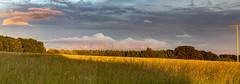 Weather June (MSPhotography-Art) Tags: lights sonnenuntergang feld wolken summertime sonnig landschaft gewitter wandern wanderung schwbischealb reutlingen schwbsichealb wiesenalb