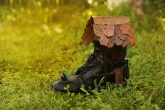 24/365 (Jessie Rose Photography) Tags: fairytale magic fairy 365 nurseryrhyme fairyhouse shoehouse livedinashoe
