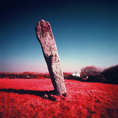 The Piper (Mark Rowell) Tags: uk 120 6x6 film mediumformat ir cornwall kodak hasselblad infrared expired swc 903 aerochrome thepipers