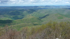 Panorama from Bickle Knob, WV (2016) (Duncan_and_Gladys) Tags: us unitedstatesofamerica westvirginia elkins