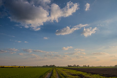 Morning on the Countryside (Infomastern) Tags: road morning sky cloud landscape countryside vg morgon landskap sdersltt landsbygd gislv