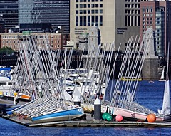Sailboats on The Charles (Harry Lipson) Tags: water boston river boats sailing cityscape charlesriver mast sailboats masts waterscape moored skiffs harrylipsoniii harrylipson
