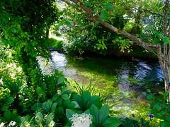 DSC03827 (Mr.J.Martin) Tags: tusslingbavaria bayren germany gapp garden canal village church wildflowers