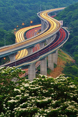 Endless stream (Singer ) Tags: trestle sunset sky mountain tree green car night canon flow lights highway track snake tail taiwan viaduct freeway singer curve     wiggle  extend      tungtree    verniciafordii    tungflower          s earthasia  canon550d  singer186