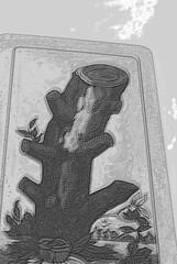 DSC_0738 (Silvana Maresca) Tags: blackandwhite white playing black cards play bianco nero carta biancoenero playingcards carte cartadagioco cartedagioco