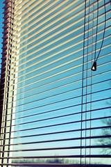 window_ (Kristina Kuncevich) Tags: morning window blinds