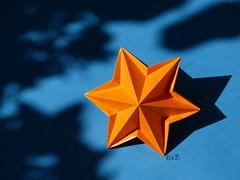 My PRIEN – FOLDS 2013 – STAR MARTI by Carmen Sprung (esli24) Tags: origami origamistar papierfalten carmensprung octagonalstar origamistern esli24 ilsez starmarti