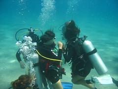 IMG_0492 (acmt2001) Tags: sea fish coral underwater  redsea scuba diving reef eilat aquasport
