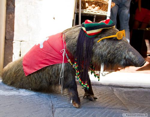 Pig of Pisa