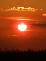 Summer Sunset (lunarman1959) Tags: sunset sky sun clouds twilight sundown bright dusk brilliant