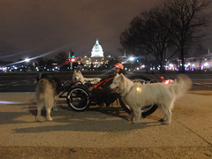 Washington D.C. on Hot Rod Track Quad - It Doesn't Get Any Cooler Than This!