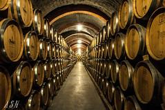 sin ttulo-0194 (Snchez Huelves) Tags: light espaa spain nikon wine bodega vino d90 riberadelduero theworldwelivein nikonflickraward nikonflickraward vividstriking