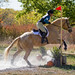 horse_riding-7.jpg