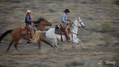 Panning IMG_2218 (blackhawk32) Tags: horses horse west cowboys wranglers wyoming cowgirls range hideout hideoutlodge