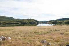 Arbuvatn (kennethmlgaard) Tags: lake nature water grass norway landscape telemark haukeli arbuvatn