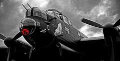 In Memory of Tony Iveson.. (mickb6265) Tags: battleofbritain dambusters avrolancaster justjane eastkirkby tirpitz 617sqaudron tonyiveson attleofbritain