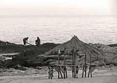 El verano esta ahi (carlos_ar2000) Tags: street sea summer people beach shop bar uruguay mar calle gente playa verano montevideo rancho buceo negocio