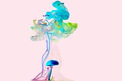 Watercolors (Narcis Sava) Tags: water colors ink drops liquid highspeed