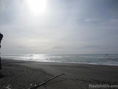 BR25-103-68307-022514.jpg (TheCinfulLife) Tags: ocean sky seascape beach oregon sand rocks surf waves view scenic seagrass beachgrass goldbeach