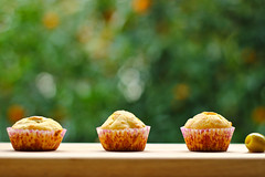 Mini delicacies (annfrau) Tags: bokeh homemade delicacies minimuffins leccornie justbaked hbw