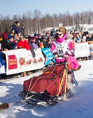 Iconic Musher DeeDee Jonrowe at the start of the 2014 Iditarod (Bower Media) Tags: alaska anchorage willow nome sleddog iditarod iditarodsleddograce deedeejonrowe jonrowe larrydonoso 1049miles larryadonoso photolarryadonoso