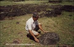 Un petroglifo en el Ahu Tongariki. Miércoles 6 de febrero 2002.
