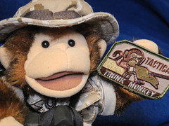 Minky the Tactical Trunk Monkey. 2012 (.James Brian Clark) Tags: christmas afghanistan cute animal toy monkey stuffed furry funny doll puppet military adorable ape trunk antics primate deployment tactical minky