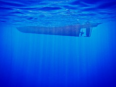 thalassa (Stefano☆Majno) Tags: sea digital swimming boat mare deep diving rays thalassa stefano majno
