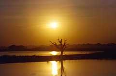 AMARAPURA FROM U BEIN BRIDGE SUNSET (patrick555666751) Tags: from bridge trees sunset asia burma south bein du east u myanmar asie sud est amarapura birmanie