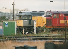 "Withdrawn 'Dutch' Class 47/3, 47315 & EWS Class 37/0, 37042 (37190 ""Dalzell"") Tags: tractor dutch spoon brush depot ee duff revised growler type3 sulzer englishelectric class47 class37 type4 37042 templecombe 47315 saltley civilengineers maroongold class473 englishwelshscottishrailways class370 d1796 d6742 sbrea springsbranchrailenthusiastassociation"