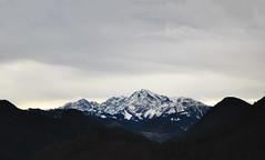 The alps (Guillermo Insfran) Tags: road trip travel winter panorama mountain snow alps salzburg train landscape photography austria nikon europa europe photographer ride panoramic scenary d7000