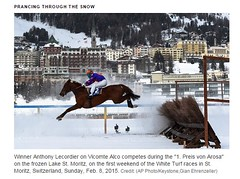 Winter  snow horse racing Europe at  ST  Moritz   CH  Switzerland (carefamilyphotos) Tags: winter horse white snow saint st schweiz switzerland europe suisse swiss sunday racing races moritz turf ch confederation feb8 winneranthonylecordieronvicomtealcocompetesduringthe1preisvonarosaonthefrozenlakestmoritz onthefirstweekendofthewhiteturfracesinstmoritz 2015creditapphotokeystone gianehrenzeller