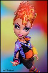 Howleen-monster high-basic-doll (dollphotos-by-dollvirus) Tags: monster photo high wolf doll foto puppe howleen