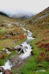 (Ousia Dark) Tags: espaa naturaleza nature fog landscape spain nikon paisaje niebla avila elraso nikond40