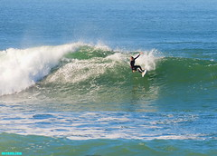 Porto28405 (mcshots) Tags: ocean california winter sea usa beach nature water coast surf waves stock surfing socal surfers breakers mcshots southbay swells combers losangelescounty