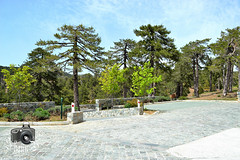 Troodos Mountains (ShaunMYeo) Tags: cyprus cipro kipar troodos zypern kypros kbrs chypre chipre kypr cypr cypern kpur kipr sipra kipras ciper cipru ciprus xipre siprus   syprus kipra kipro      sp ipru    kupelo sayprus qipro   kpros  cyprum        qibrs  kaiperu   saipurasi      sayiprasi