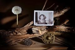 Somerset 1971 (Apionid) Tags: stilllife polaroid memories werehere day132366 nikond7000 hereios 366the2016edition 3662016 11may16