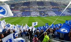 ...........end of our season................. (patrick l clinton) Tags: football together enjoy uta celebrate bha amex