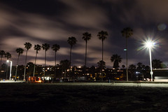 Palm Tree Silhouette (imbaoroh) Tags: california tree beach silhouette cali night canon photography lights la san long exposure bright diego palm shutter jolla t5i