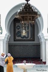 Fez, Marruecos (Manuiglesias) Tags: nikon focus 85mm fez manual marruecos lense seoras d90