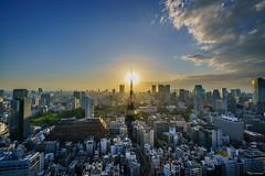 Tokyo Sunset (shiroooooooo) Tags: city sunset urban sun tokyo cityscape tokyotower