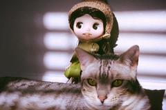 Kitty friend ^.^