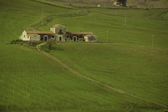 Primavera en Sicilia (Sicilian springtime) (macsbruj) Tags: italy verde green italia campo sicily sicilia