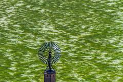 Vent (Aicbon) Tags: verde green landscape spain cereal paisaje viento catalonia molino campo catalunya seca lleida segarra moli lerida lasegarra secano montfalcomurallat